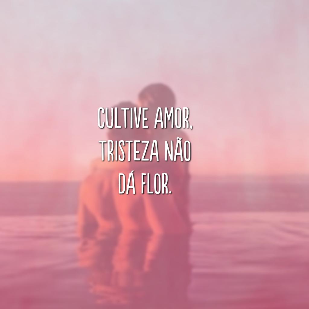 Cultive amor, tristeza não dá flor.