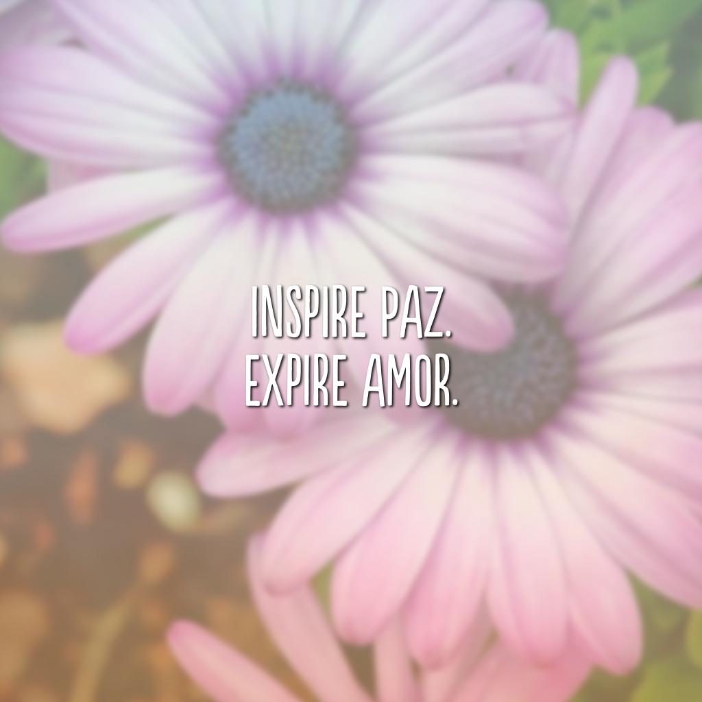 Inspire paz. Expire amor.