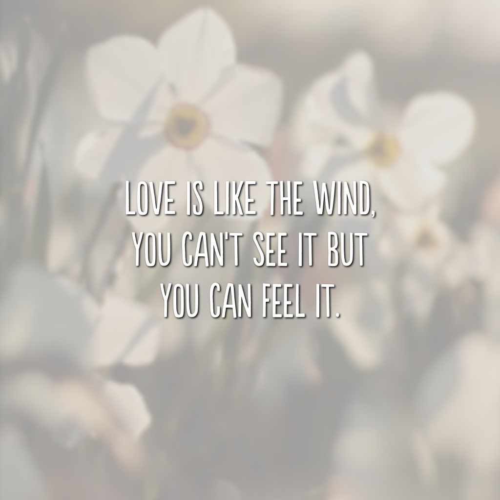 Love is like the wind, you can't see it but you can feel it. (Amor é como o vento, você não pode ver, mas pode sentir)