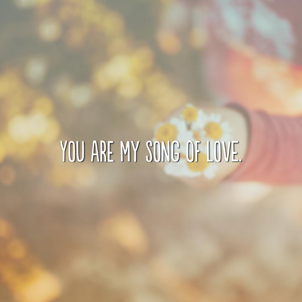 You are my song of love. (Você é a minha canção de amor)