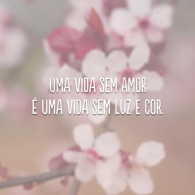Uma vida sem amor é uma vida sem luz e cor.