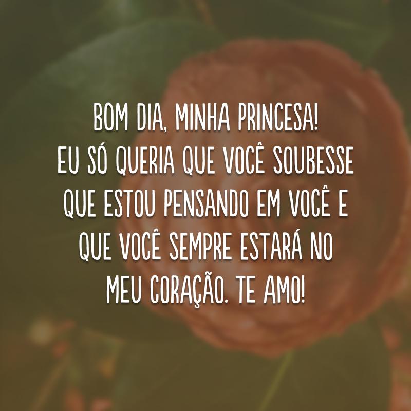 Bom dia, minha princesa! Eu só queria que você soubesse que estou pensando em você e que você sempre estará no meu coração. Te amo!