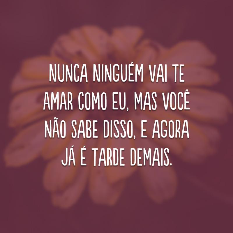 Nunca ninguém vai te amar como eu, mas você não sabe disso, e agora já é tarde demais.