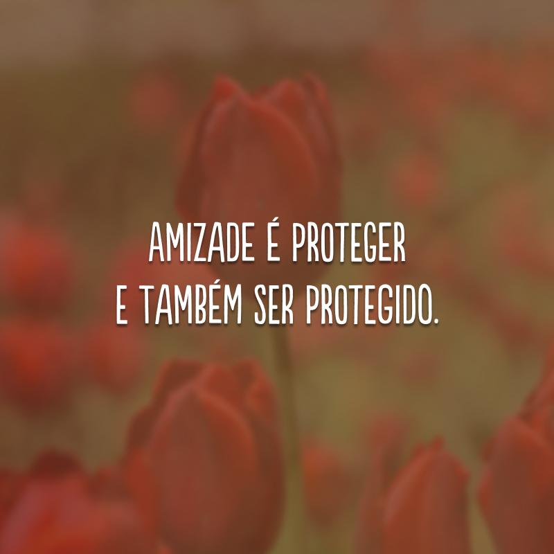 Amizade é proteger e também ser protegido.