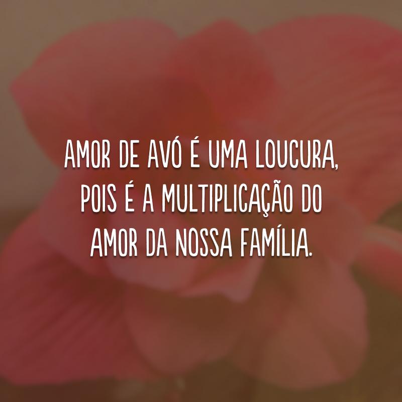 Amor de avó é uma loucura, pois é a multiplicação do amor da nossa família.