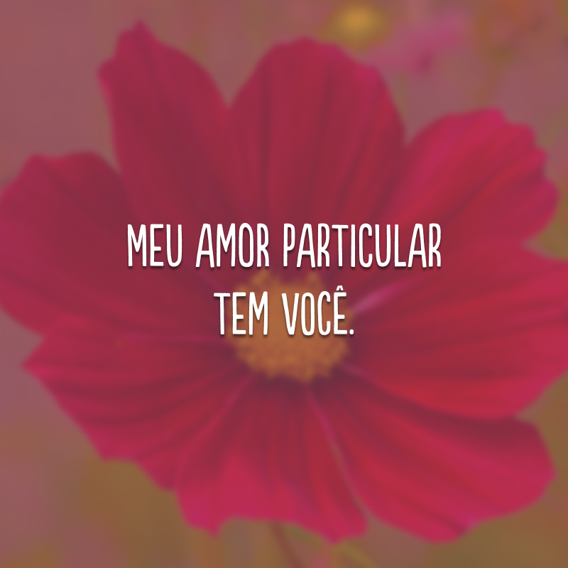 Meu amor particular tem você.