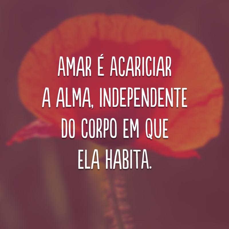 Amar é acariciar a alma, independente do corpo em que ela habita.