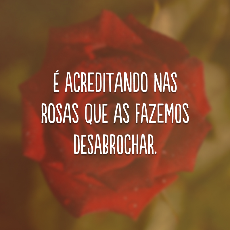 É acreditando nas rosas que as fazemos desabrochar.
