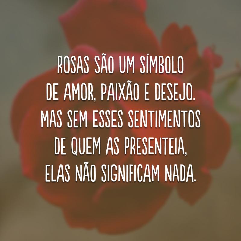 Rosas são um símbolo de amor, paixão e desejo. Mas sem esses sentimentos de quem as presenteia, elas não significam nada.