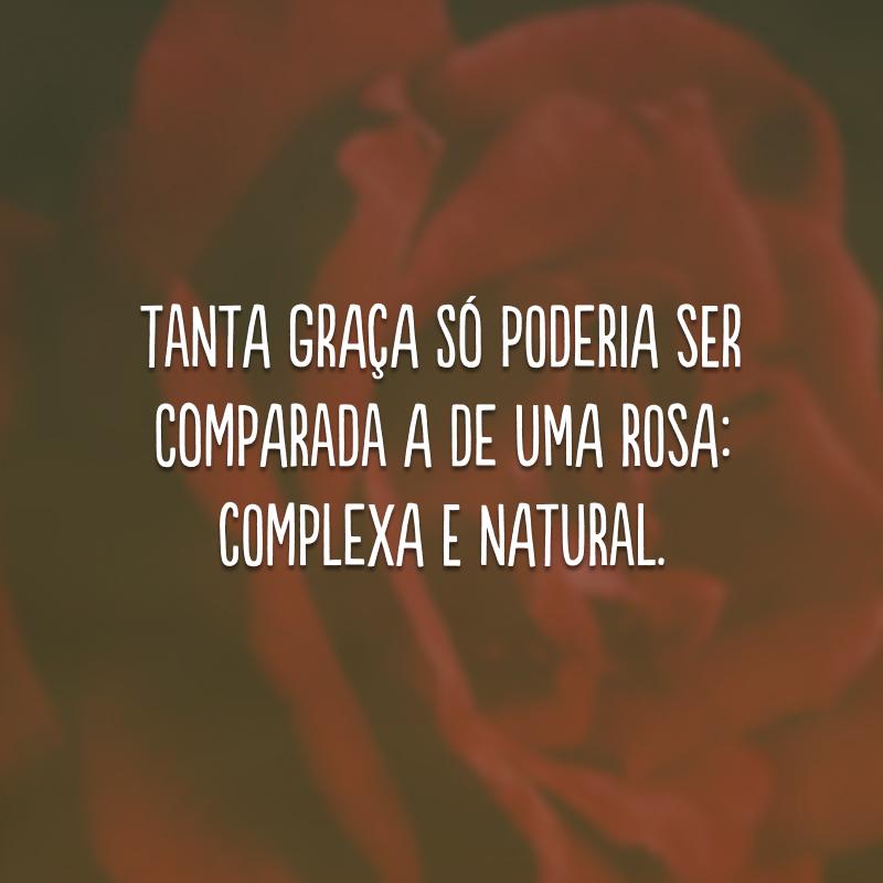 Tanta graça só poderia ser comparada a de uma rosa: complexa e natural.