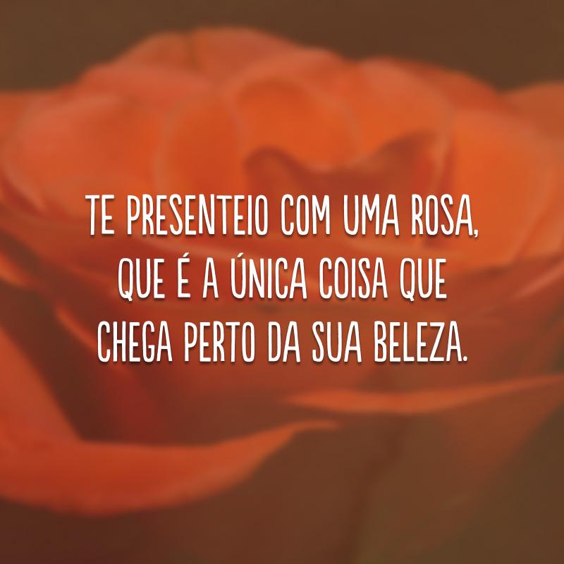 Te presenteio com uma rosa, que é a única coisa que chega perto da sua beleza.