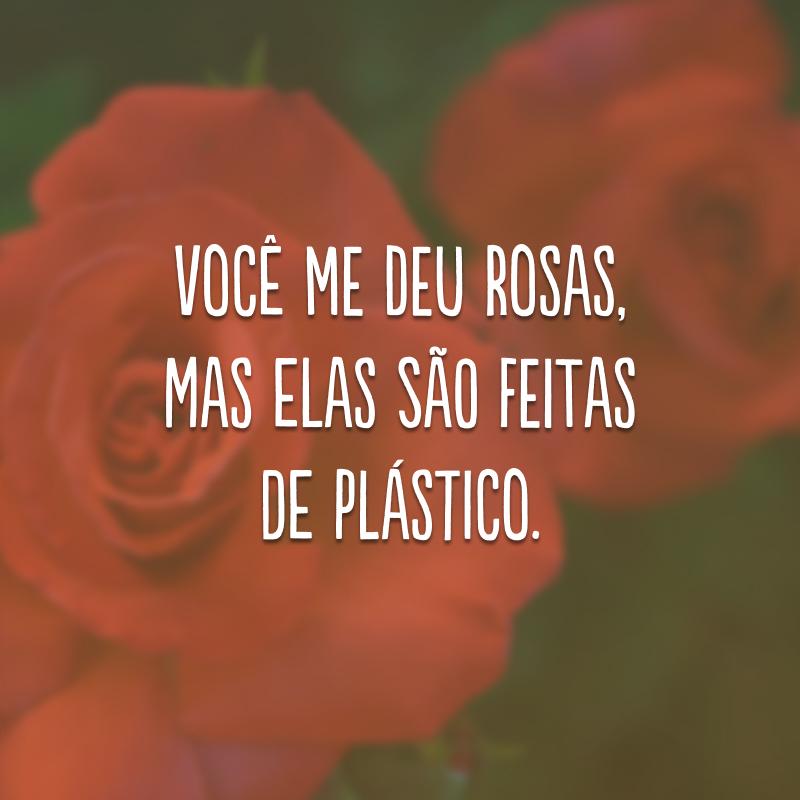 Você me deu rosas, mas elas são feitas de plástico.