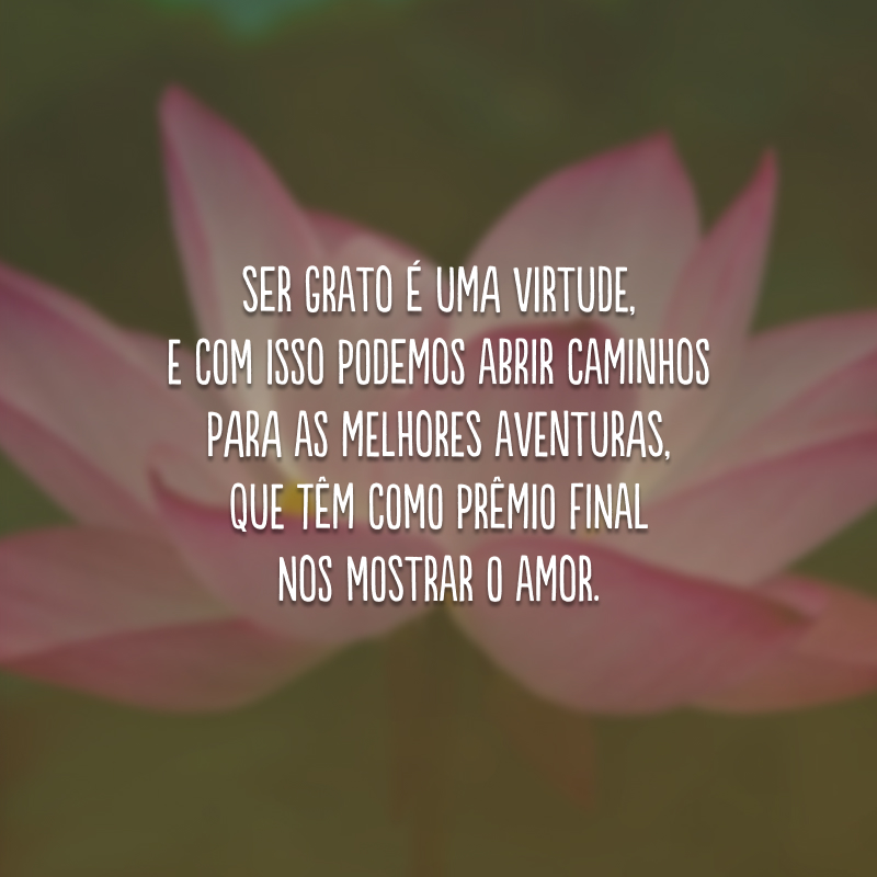 Ser grato é uma virtude, e com isso podemos abrir caminhos para as melhores aventuras, que têm como prêmio final nos mostrar o amor.