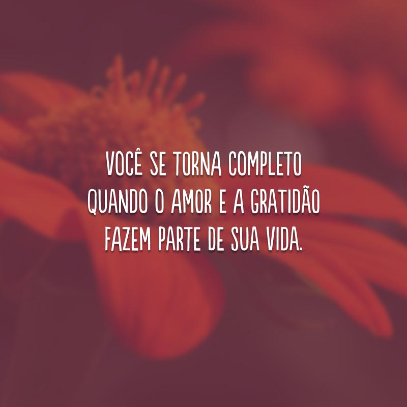 Você se torna completo quando o amor e a gratidão fazem parte de sua vida.