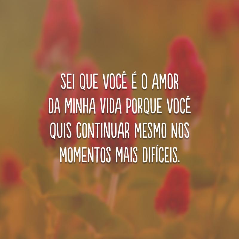 Sei que você é o amor da minha vida porque você quis continuar mesmo nos momentos mais difíceis.